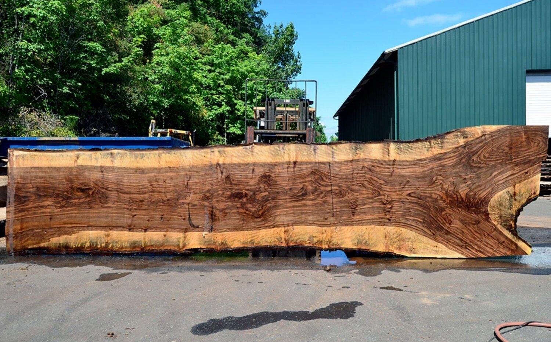 Live edge wood section